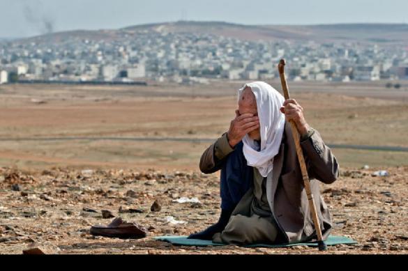 Удастся ли в Сирии избежать прямого столкновения США и России?. 392183.jpeg