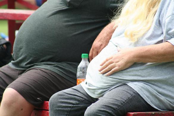 С 2011 года в России число больных ожирением выросло в два раза. 403183.jpeg