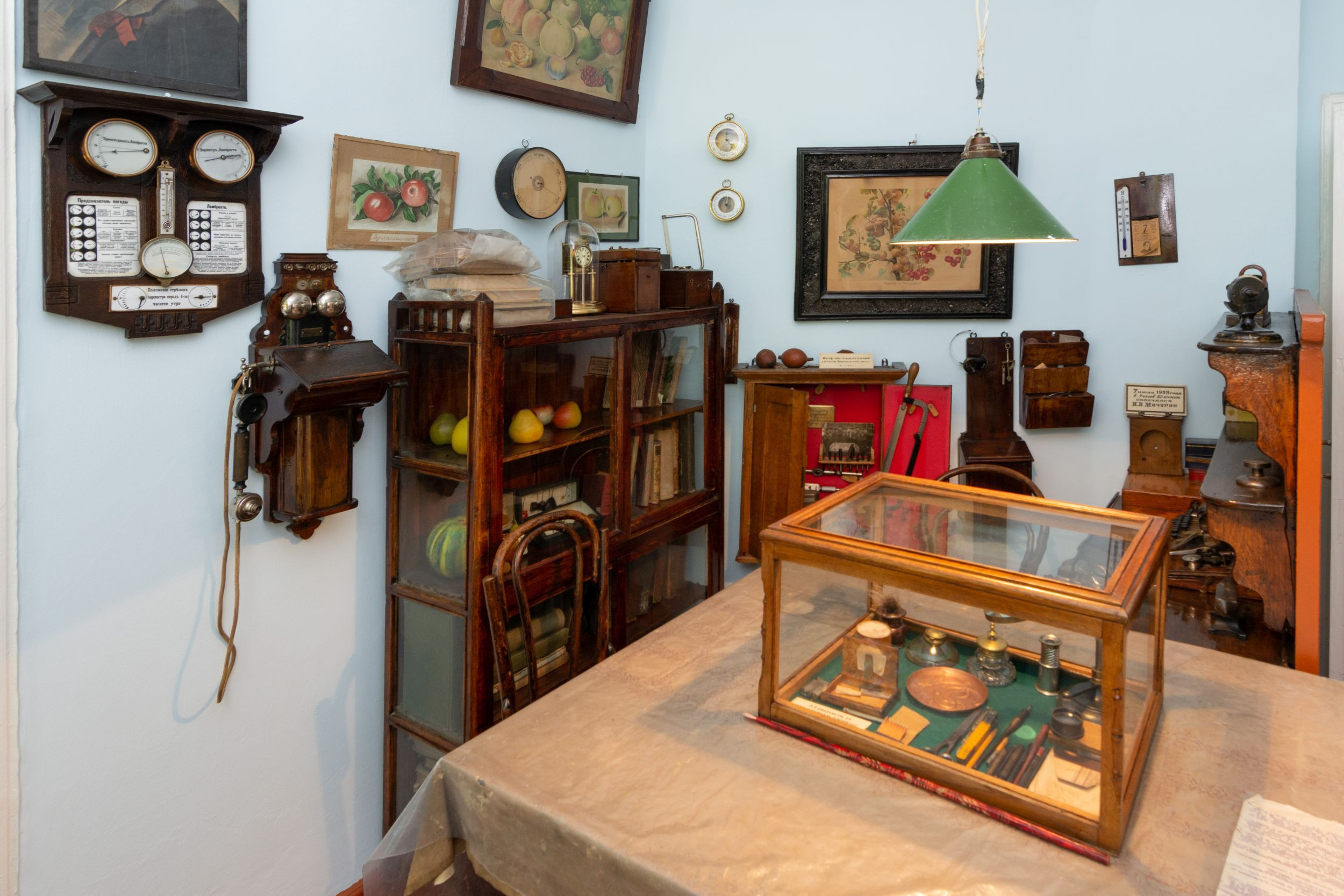 Дом-музей Мичурина в Мичуринске. 409183.jpeg