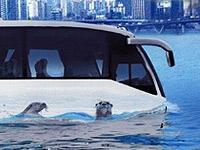 Автобус-амфибия будет катать туристов по Будапешту и Дунаю
