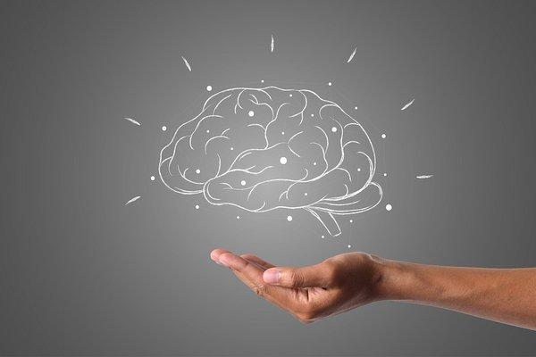 Интересные исследования человеческого мозга. Интересные исследования человеческого мозга