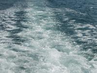 Десятки пассажиров парома погибли у берегов Гонконга. 271186.jpeg