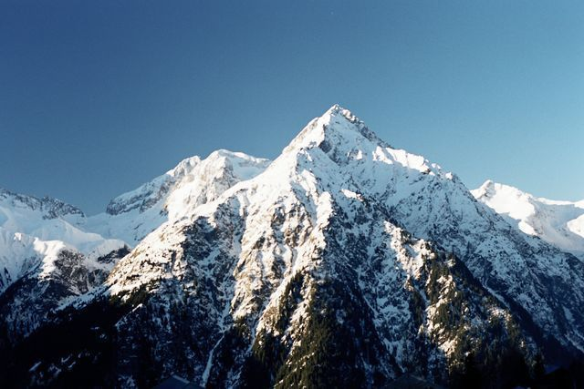 В Альпах найден ящик с пшеницей возрастом 3,5 тысячи лет. В Альпах найден ящик с пшеницей возрастом 3,5 тысячи лет