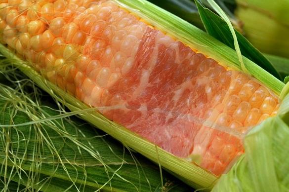 Чудеса ГМО: в США ученые вывели мясокукурузу. 378191.jpeg