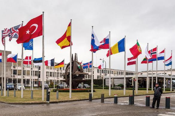 Глава Пентагона попросит страны НАТО об объединении сил против общего врага. 389192.jpeg