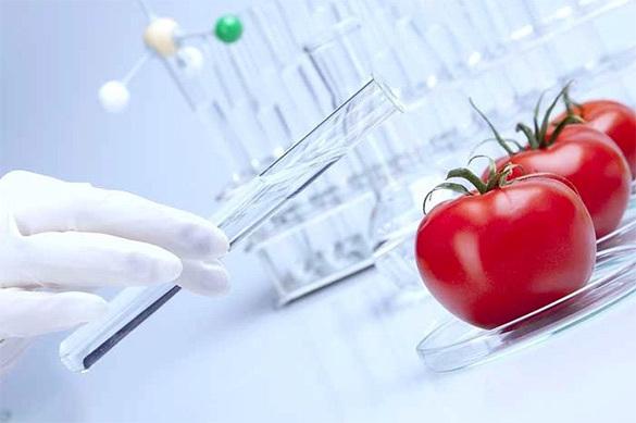 Современные продукты питания вызывают синдром дефицита внимания