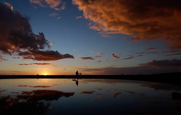 Пляжи Калифорнии привлекают одиноких собачников. 313197.jpeg