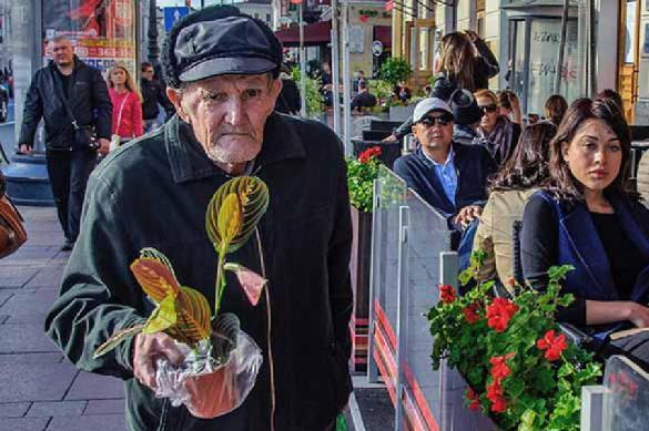 В ПФР назвали самых старых работающих пенсионеров России. 387204.jpeg