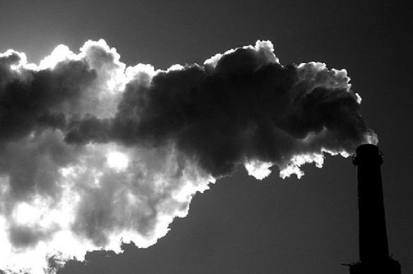 Ученые рассказали, что делает с организмом грязный воздух. 393204.jpeg