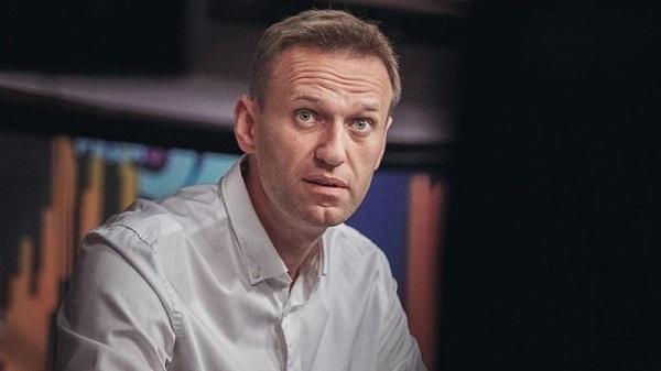 """Петербургскую """"фейк-фабрику"""" Навального курировала журналист """"Проекта"""". 404205.jpeg"""