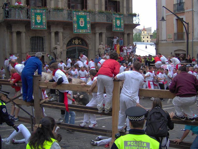В Испании от разъяренных быков пострадали пять человек. 389210.jpeg