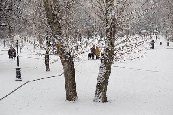 В Москве снегопад и пробки 8 баллов. 306212.jpeg