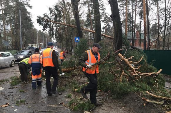 Семнадцать человек пострадали в результате урагана в Москве, погиб ребенок. Семнадцать человек пострадали в результате урагана в Москве, пог