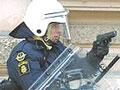 Франция обвинила россиянку в похищении 3-летней Элизы