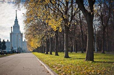 Лето в России оставило неудовлетворенным каждого пятого. 376214.jpeg