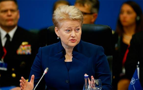 Президент Литвы обвинила Россию в терроризме. Президент Литвы обвинила Россию в терроризме
