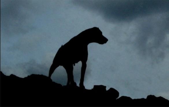 Конан Дойл не писал Собаки Баскервилей?