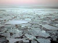 В мировом океане растет содержание ртути