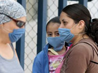 В Бразилии подтверждено уже 905 случаев заболевания свиным