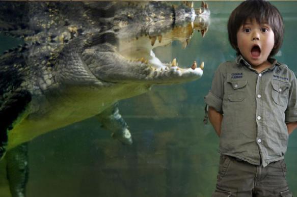Житель Таиланда использует крокодила вместо сторожевой собаки. 396231.jpeg