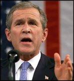 С чем плохо у Буша