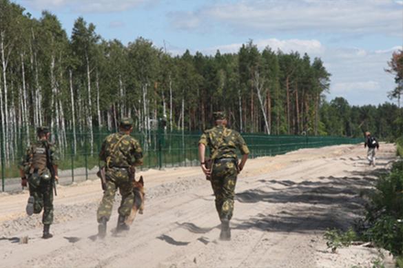 Украинские пограничники несколько раз спускали собак на ОБСЕ. 376235.jpeg