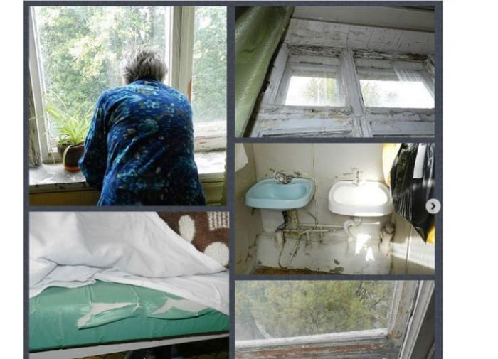 Дума ограничила экспорт российского леса