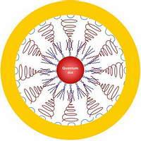 Золотое нанояйцо ставит диагноз и лечит