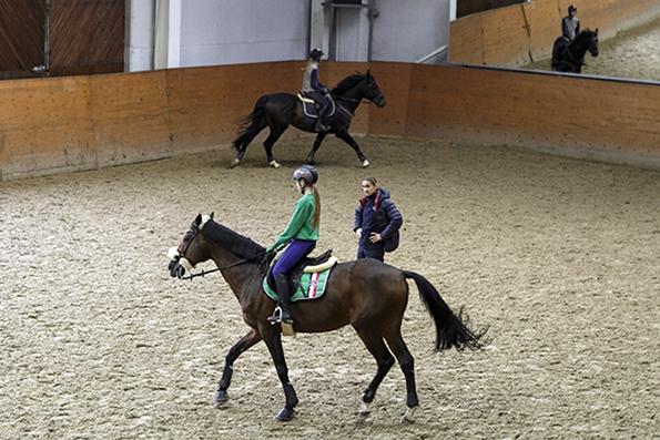 По коням: Кремлевская школа верховой езды переберется на ВДНХ. Кремлевская школа верховой езды переберется на ВДНХ