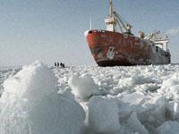 Россия в 2012 году потребует у ООН часть Арктики. 241247.jpeg