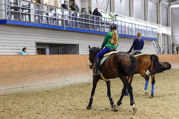 По коням: Кремлевская школа верховой езды переберется на ВДНХ. Кремлевская школа