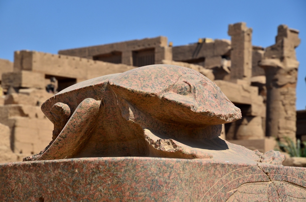 Необычные памятники насекомым. Памятник скарабею в Египте