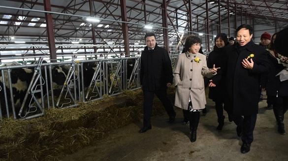 Участок в 7 тыс. га получили вьетнамцы на молочный комплекс под Волоколамском. 400249.jpeg