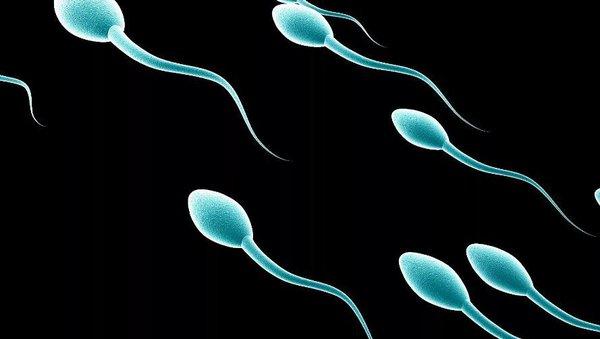 Услуги банка спермы – игра в лотерею. сперматозоиды