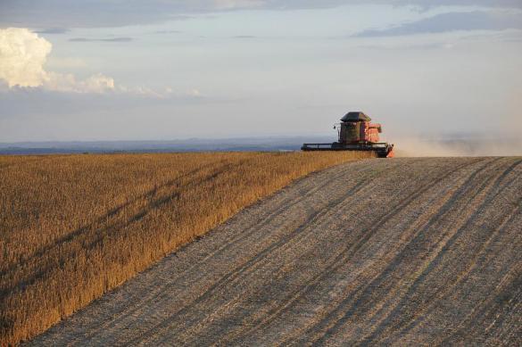Американские СМИ: Россия бьет не только по нашим выборам, но и по фермерам. 392250.jpeg