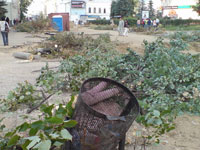 Ураган сносит деревья в Москве