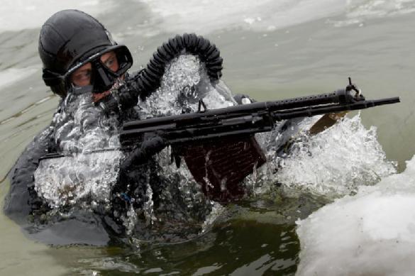 """Боевые пловцы ВМФ начали уничтожение """"диверсантов"""" в Финском заливе. 379255.jpeg"""