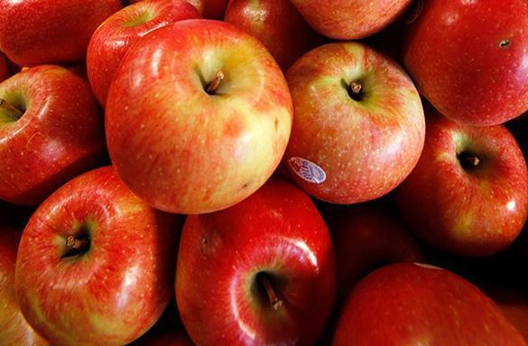 Спасибо Белоруссии: Польша наращивает экспорт яблок в Россию