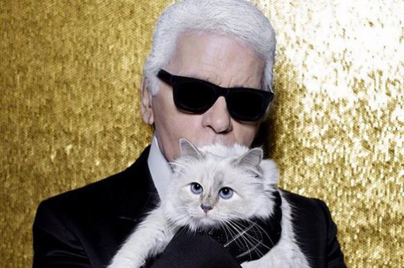 Кошка Лагерфельда может не получить наследства.
