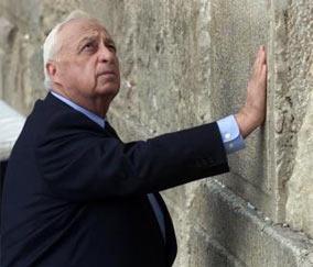 Израильтяне ликвидируют еврейские поселения в Палестине