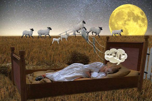 Ученые рассказали о продуктах для улучшения сна. 393264.jpeg