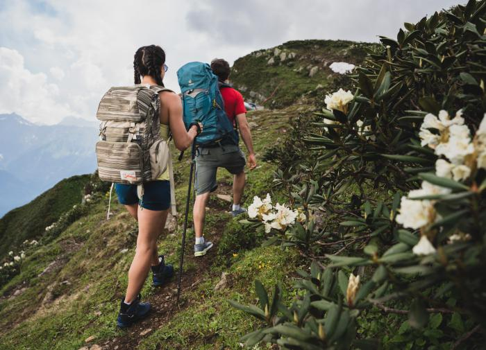 Развивающиеся страны не спешат под финансовое крыло МВФ
