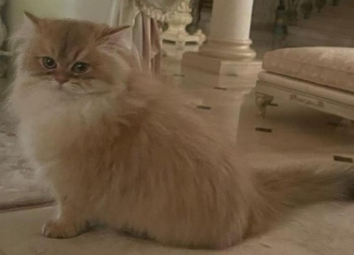 Всемирный банк даст Латвии в долг 200 млн евро