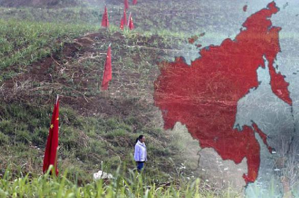Власти хотят запретить Китаю скупать российский лес. 397269.jpeg