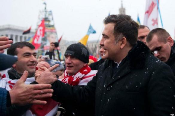 Саакашвили ищут в палаточном городке. 380275.jpeg