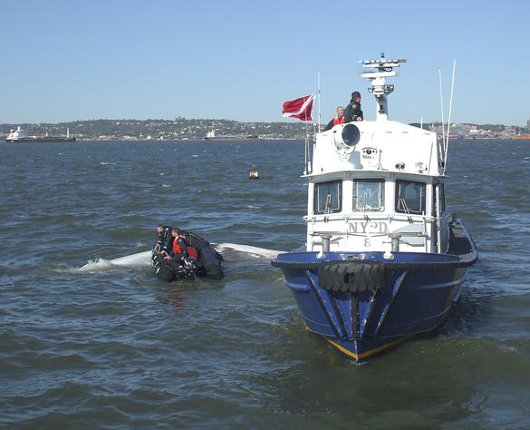 Встреча с китом погубила гражданку Канады. Встреча с китом