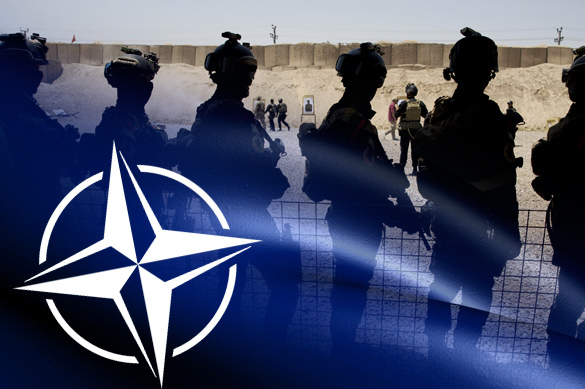 Трамп потребовал от НАТО сдать валюту