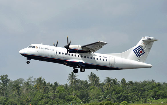 самолет Индонезии