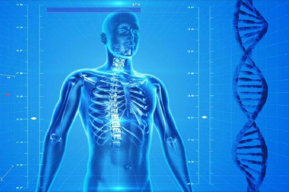 Ученые назвали самую горячую точку в человеческом теле