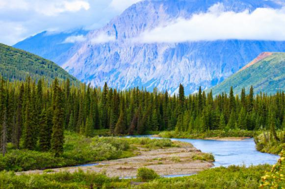 """""""Все свое неси с собой"""": туристам на Аляске запретят ходить в туалет на природе. Все свое неси с собой: туристам на Аляске запретят ходить в ту"""